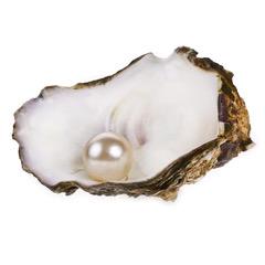 parel in een oester