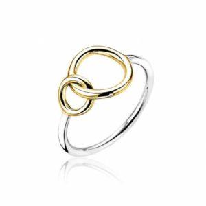 ring van Zinzi twee cirkels met elkaar verbonden