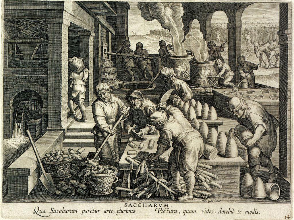 Suikerbroden maken in de 17e eeuw